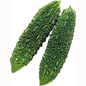 ゴーヤ 種 あばしゴーヤ 小袋(約10ml)