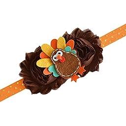 Thanksgiving Fall Turkey Pumpkin Owl Felt Brown Gold Headband Baby Girl Newborn Gift (Turkey Headband)