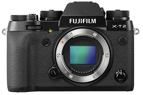 Fuji X-T3 Hands-On Review