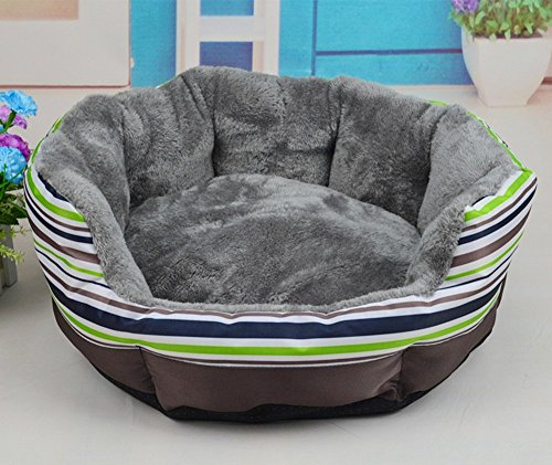 NEO Home Dog Bed Made of Oxford and Short Plush,All-in-One Design in Many Colors and Sizes,Easy-to-Clean, 100% Machine Washable, Tumble Dry.(S,M,L Available) (Cheap Big Dog Beds compare prices)