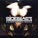 Flight of a Moth