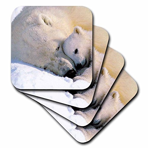 Wild animals - Polar Bear and Cub - set of 8 Coasters - Soft (cst_516_2)