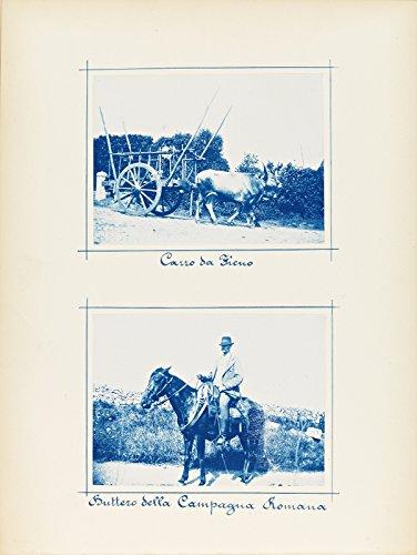 POSTER Carro da Fieno Buttero della Campagna Romana Roma Settembre 1899 Norway Wall Art Print A3 replica