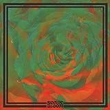 Sonic Bloom [Analog]