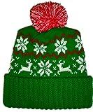 Green Reindeer Snowflake Winter Beanie Pom Hat Cap Ugly X Mas Sweater