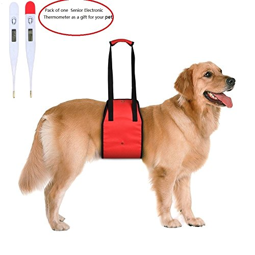 L Amp Lh Dog Lift Support Harness With Handle Assist Sling For