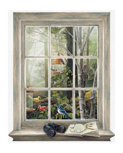 York Wallcoverings Kr2622M Bird Watching Trompe L'Oiel Window Wall Accent, Mural