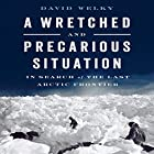 A Wretched and Precarious Situation: In Search of the Last Arctic Frontier Hörbuch von David Welky Gesprochen von: Joel Richards