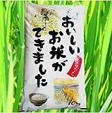 【精米】『☆たんぼだより10k』国内産 白米 ブレンド米 10kg