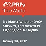 No Matter Whether DACA Survives, This Activist Is Fighting for Her Rights | Stephen Snyder