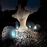 Gardman Solar Rock Spot Light