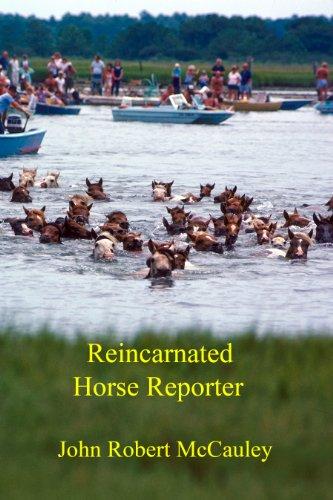 Book: Reincarnated Horse Reporter by John Robert McCauley