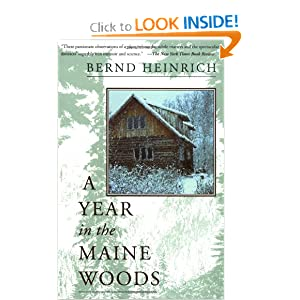 A Year In The Maine Woods by