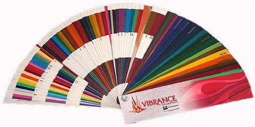 Ppg Vibrance Custom Paint Color Chartschips Autocar Car Paint