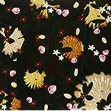 1998-2005 Noise Floor Rariti (Vinyl)