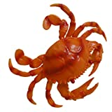 CRAB SEALIFE SEA LIFE BATH TOY DISPLAY ORANGE