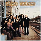 (pronounced 'leh-'n�rd 'skin-'n�rd)by Lynyrd Skynyrd