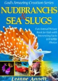 Nudibranchs & Sea Slugs! Kids Book About Colorful Marine Life: Fun Animal Picture Book for Kids with Interesting Facts & Wildlife Photos (Gods Amazing Creation Series)