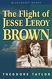 Flight of Jesse Leroy Brown (Blue Jacket Books) (Blue Jacket Books)