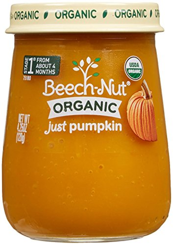 Beech-Nut Organic Just Pumpkin Stage 1 Baby Food, 4.25 Ounce (Pack of 10) (Baby Food Stage 1 Beechnut compare prices)