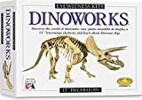 The <b>Eyewitness Dinoworks Casting Kits</b> by Skullduggery combine creativity, discovery, and learning in one exciting artistic journey. Each kit includes <b>everything needed to create an educational masterpiece</b>:<p>-PerfectCast Mix<br>-Reusable Molding Trays<br>-Paints & Paint Brush<br>-Magnets and Glue<br>-Illustrated Educational Booklet<br>-Complete Instructions<p>First, mix the PerfectCast mold mix and pour it into the molds. While it sets read all about what its like to be a paleontologist in the illustrated booklet! Unmold your creation, paint the parts and let them dry. Now glue them to the included magnets and you have your own work of art that can be displayed on most metal surfaces. Children will have a hands on learning adventure they can share with everyone!<p><b>Skullduggery is proud to offer their classic Eyewitness Kit</b> line of quality educational products that combine discovery and fun, providing kids with many hours of enjoyment and learning! Eyewitness Kits bring fun and learning together by utilizing vibrant imagery and unique and relevant subject matter in a hands-on product that truly engages a child. Just the sort of quality educational product you have come to expect from Skullduggery - and they are <b>proudly made in the USA!</b>