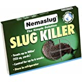 Slug Nematodes 12million (Treats 40sq.m)