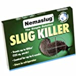 Slug Nematodes 12million (Treats 40sq.m)