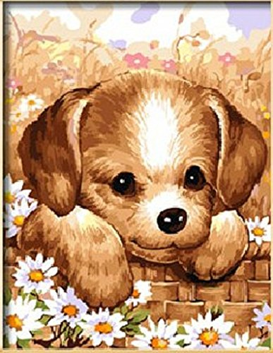 DIY Paint By Number Kits Small pet dog 16x20 inch Frameless