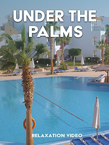 Relaxation Video: Under the Palms