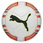 PUMA Ball evoPOWER Lite, White/Fluro...