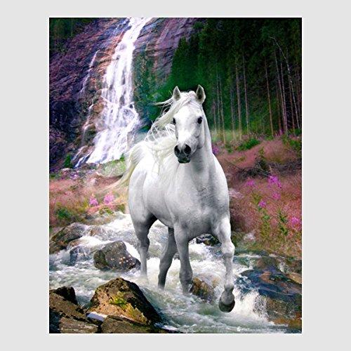 Kunstdruck Poster - Bob Langrish White Horse weißes Pferd Waterfall Wasserfall 40 x 50 cm Poster, Bild, Cliprahmen optional, hier ohne Rahmen
