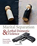 img - for Marital Separation and Lethal Domestic Violence book / textbook / text book