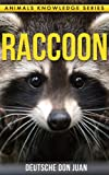 Raccoon: Beautiful Pictures & Interesting Facts Children Book About Raccoon's (Animals Knowledge Series) (English Edition)