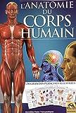 L'anatomie du corps humain : 24 grandes planches illustrées...