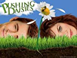 Pushing Daisies: Pie-Lette