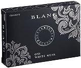 カーメイト 車用芳香剤 ブラング ブースタードア 置き型 ドアポケット ホワイトムスク(フローラルムスク系の香り) ブラック 130g G721