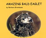 Amazing Bald Eaglet (Story Within a Story #1)