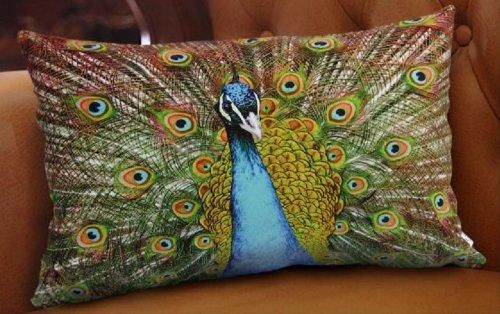 Fablegentxh2013 - Elegant Decorative Throw Pillow / Cushion Cover - Peacock Design On Both Sides front-553289