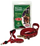 Gentle Leader Deluxe Head Collar and Leash, Medium, My Little Angel/Red