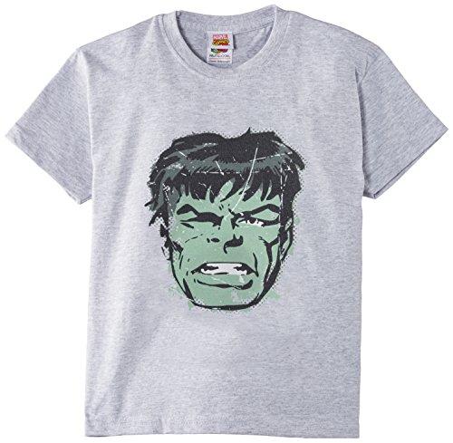 Marvel Boy's Classics Hulk Face Short Sleeve T-shirt Picture
