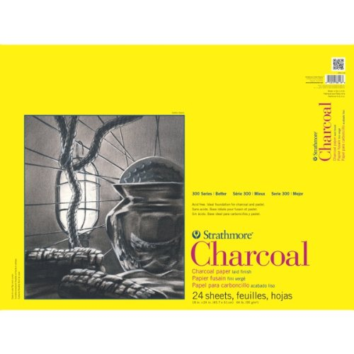 Strathmore 300 Series Charcoal Paper Pads 18 in. x 24 in. sheets pad of 24