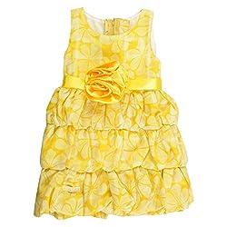 Little Kangaroos Girls Yellow Dress (8903208892168_Yellow_2-3 Years)