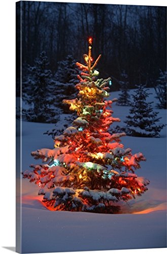 Carson Ganci Premium Thick-Wrap Canvas Wall Art Print entitled Christmas Tree With Lights Outdoors In The Forest