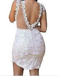 Bling-Bling Dress Women's Lace Nude Mesh Accent Dress