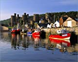Poster 90 x 70 cm: Fishing boats reflected in the castle of Conwy by Ric Ergenbright / Danita Delimont - high quality art print, new art poster