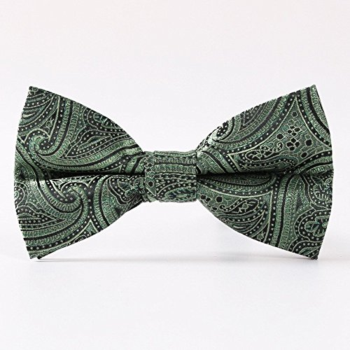 Gazebo Green Pre-Tied Elegant Paisley Wedding Dressy Bow Tie (Metallic Mint & Black) (Green And Black Bow Ties compare prices)