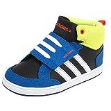 Adidas neo - Hoops