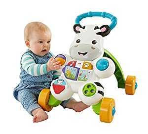 Fisher-Price Learn with Me Zebra Walker by [Maker]