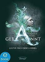 Gebannt. Unter fremdem Himmel: Band 1 (Aria und Perry-Trilogie) (German Edition)
