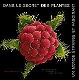 """Afficher """"Dans le secret des plantes"""""""